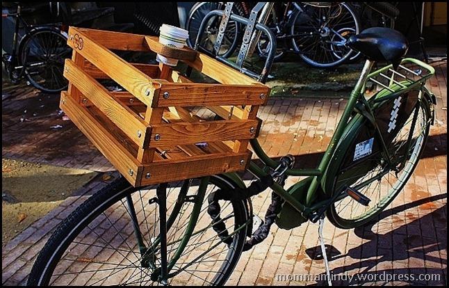 Bike Basket Seattle Style