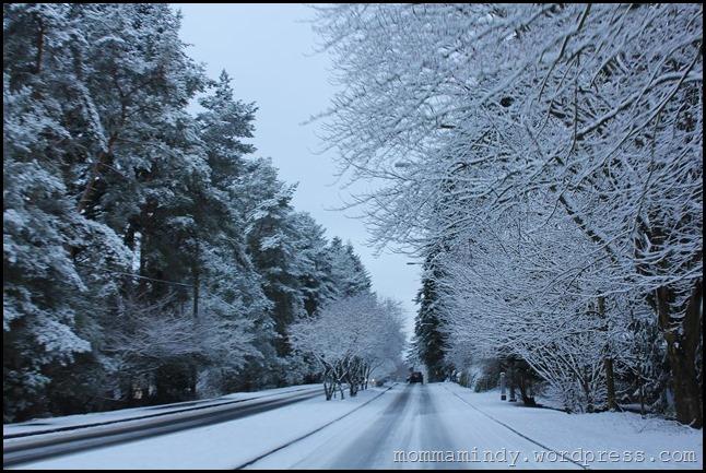 SNOW DAY 057