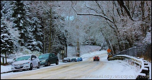 SNOW DAY 086